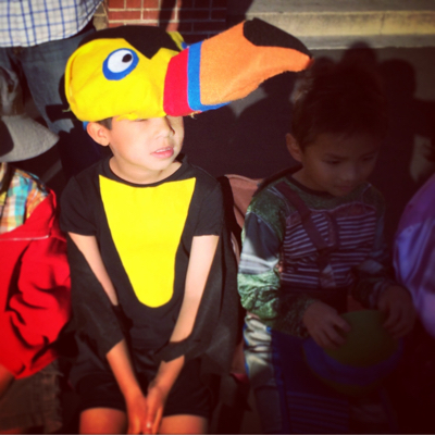 My Son's Homemade Toucan Costume.